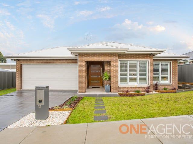 12 Chitambo Street, Macquarie Hills, NSW 2285