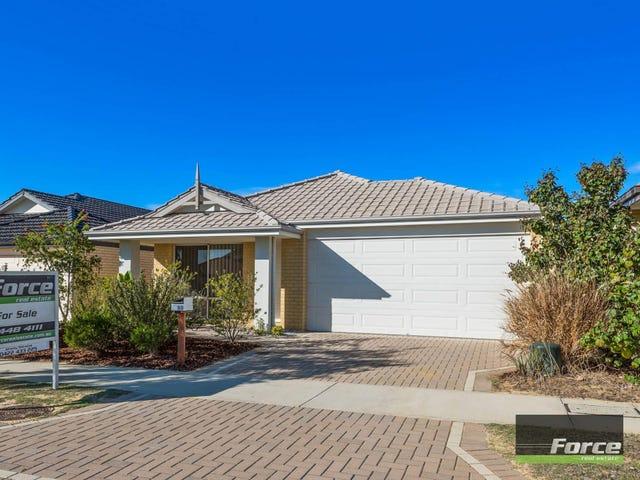 20 Serrata Road, Banksia Grove, WA 6031