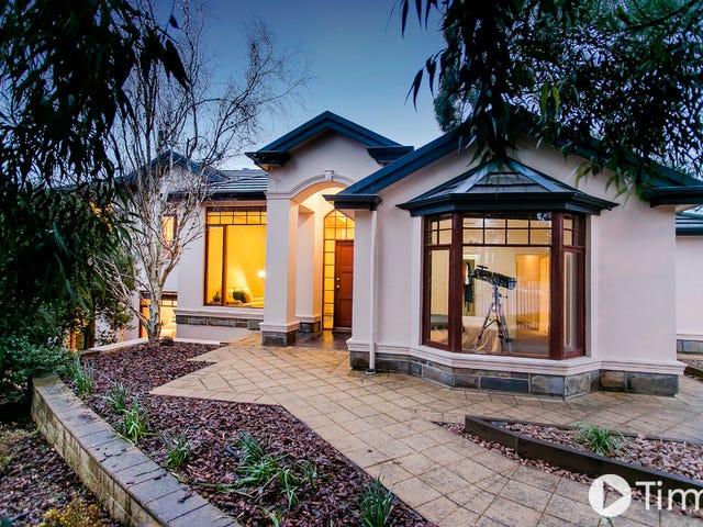 7 Alexandra Place, Craigburn Farm, SA 5051