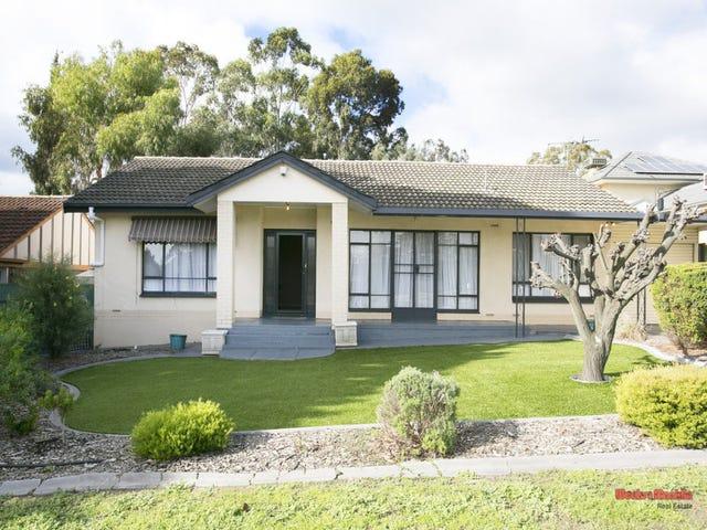 209 Hancock Road, Banksia Park, SA 5091