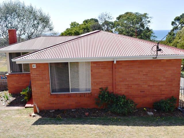81 Pelissier Street, Somerset, Tas 7322