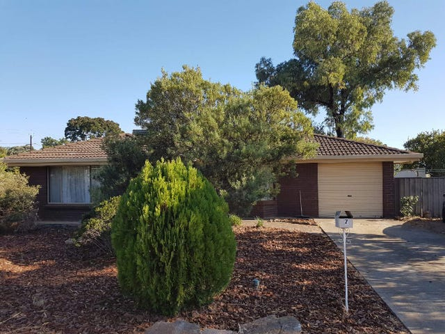 7 Ayling Street, Willaston, SA 5118