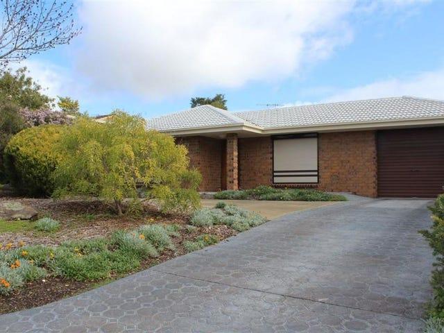 22 Sauvignon Court, Wynn Vale, SA 5127