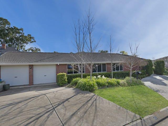 43 Burnbank Grove, Athelstone, SA 5076