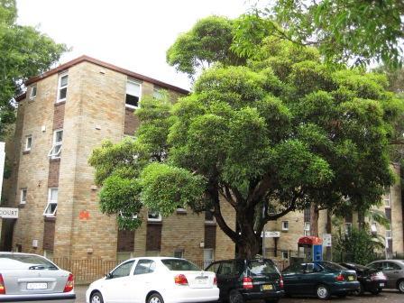 9/54 Hopewell Street, Paddington, NSW 2021