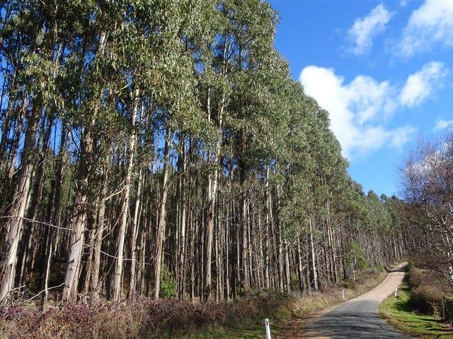 . Scotts Road, Mole Creek, Tas 7304