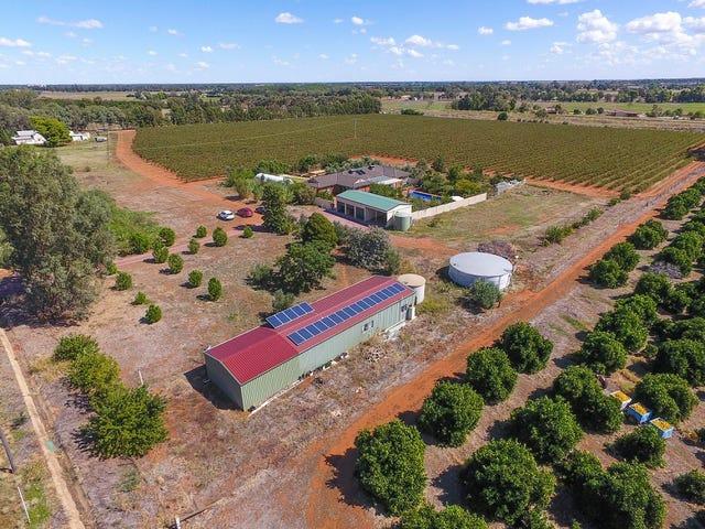 374 Stringer Rd, Leeton, NSW 2705