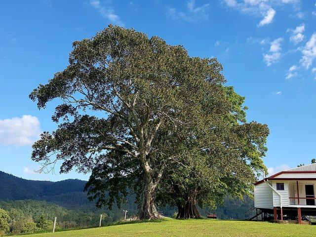 1606 Mount Kilcoy Road, Mount Kilcoy, Qld 4515