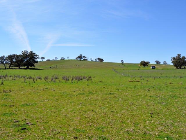 190 Trilby Lane, Gulgong, NSW 2852