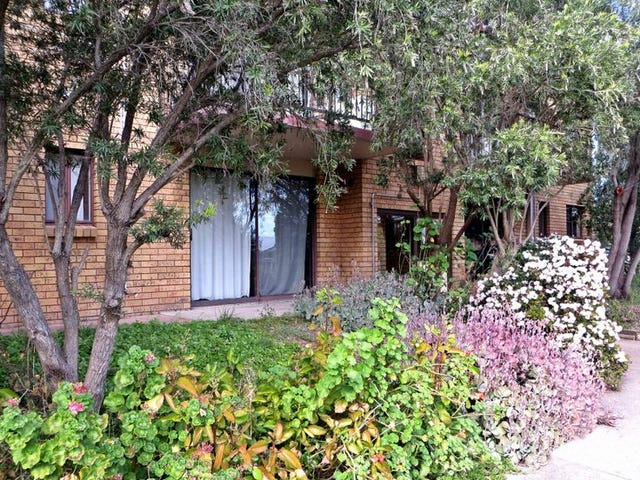 18/2 'The Grove' Skellatar Street, Muswellbrook, NSW 2333
