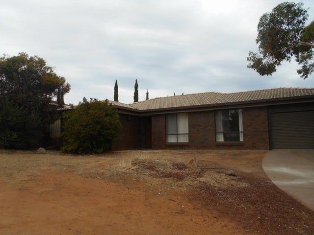 9 Peter Place, Hillbank, SA 5112