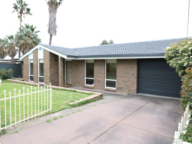 16 Foster Street, Parkside, SA 5063