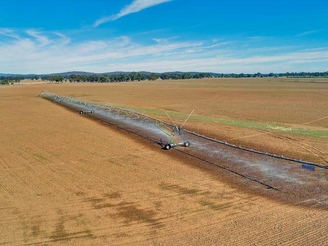 Riverview Narromine Road, Dubbo, NSW 2830