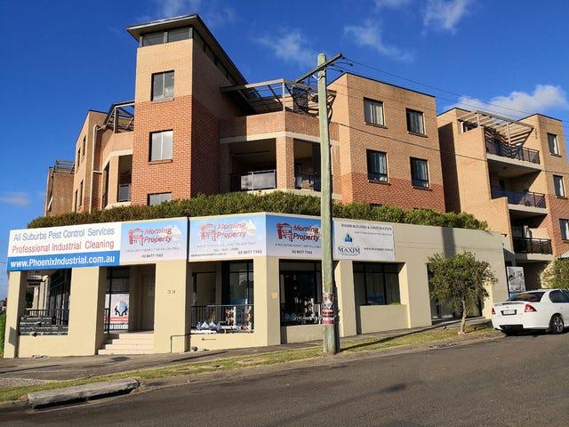 39 Earl St, Merrylands, NSW 2160