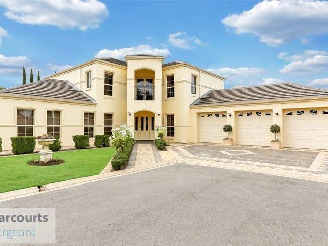 9 Highgate Place, Golden Grove, SA 5125