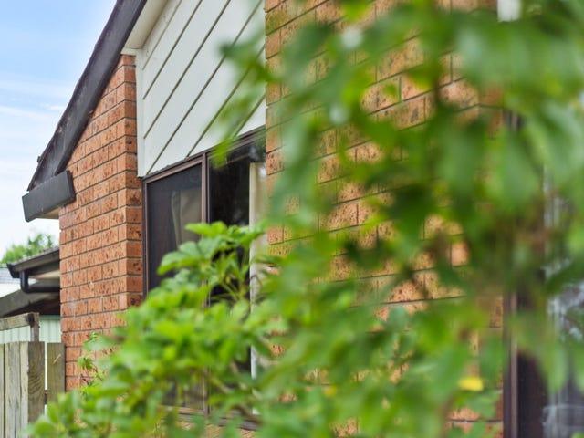 29 Casuarina Avenue, Medowie, NSW 2318