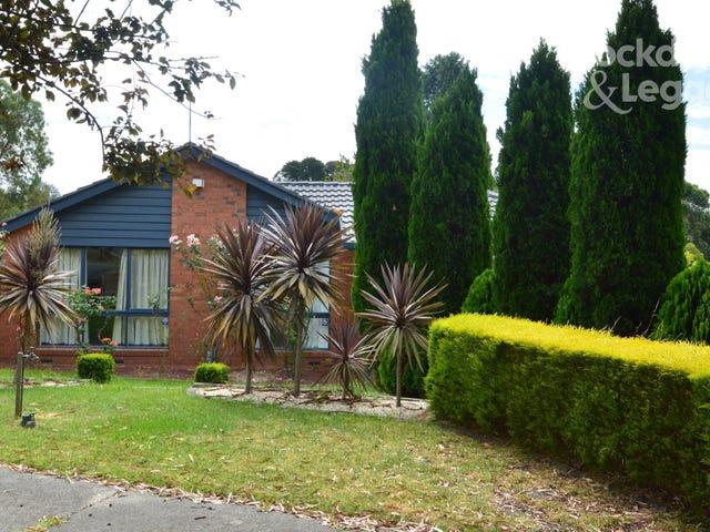14 Lalor Close, Mulgrave, Vic 3170