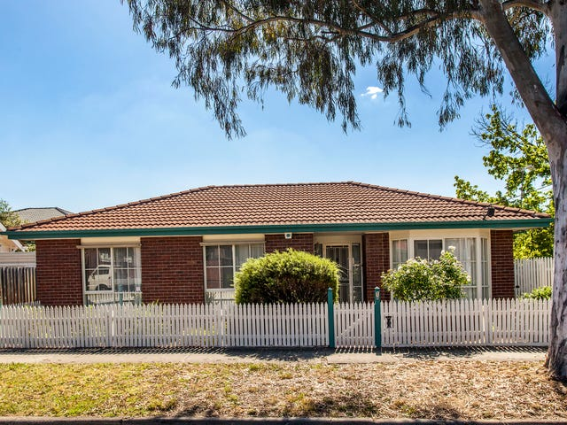 1A Saxton Street, Box Hill North, Vic 3129