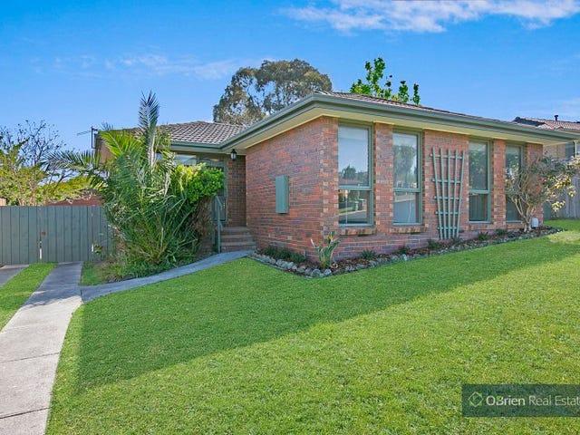 7 Currie Avenue, Endeavour Hills, Vic 3802