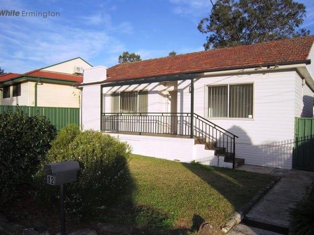 12 Macarthur Street, Ermington, NSW 2115