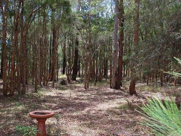Lot 1 Warwiba Road, Old Bar, NSW 2430