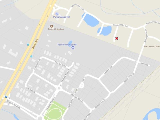13 Kirrama Court, Mango Hill, Qld 4509