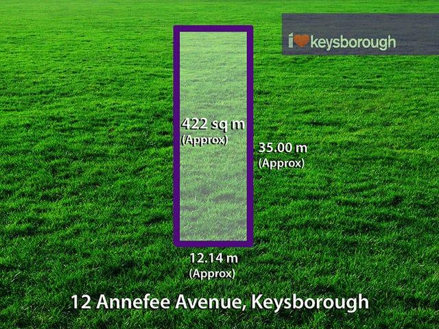 12 Annafee Avenue, Keysborough, Vic 3173