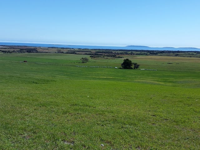 684 Palana Road, Whitemark, Tas 7255