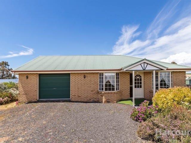 579 Preston Road, North Motton, Tas 7315