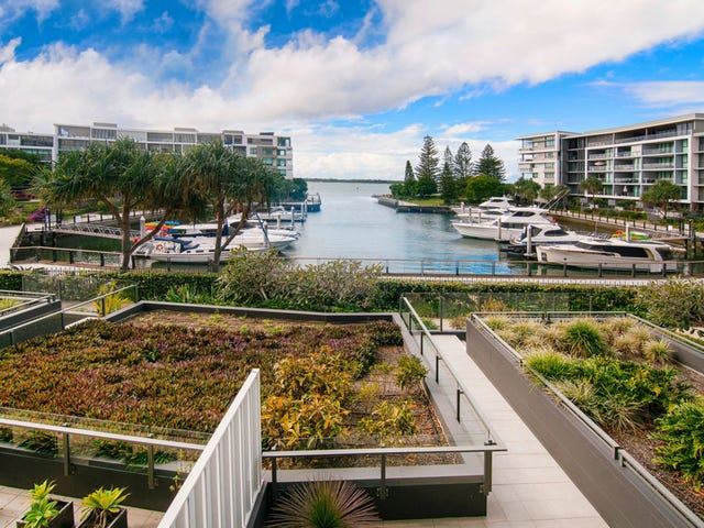 4203/323 Bayview St., Hollywell, Qld 4216