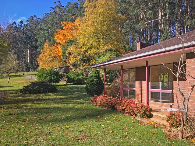 Toolangi, address available on request