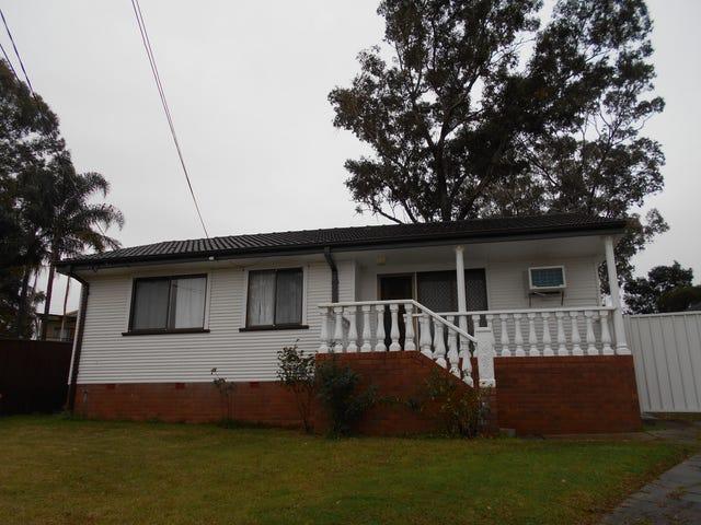10 Tumut Place, Heckenberg, NSW 2168