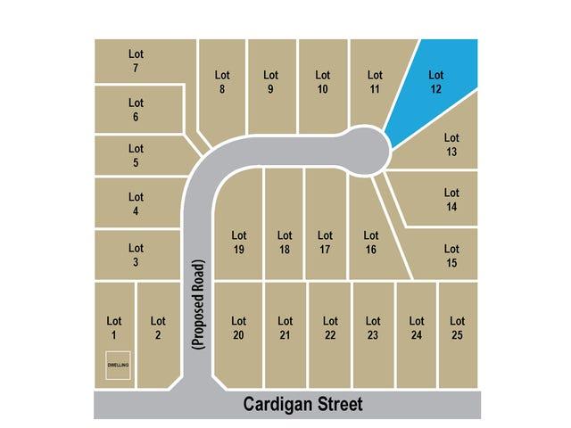 Lot 12  Cardigan Street, Renwick, NSW 2575
