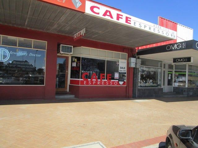 12 Barwell Ave, Barmera, SA 5345