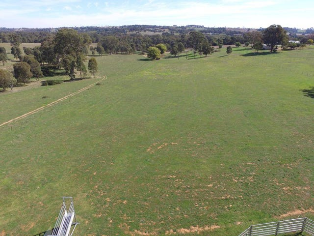200a Back Creek Road, Young, NSW 2594