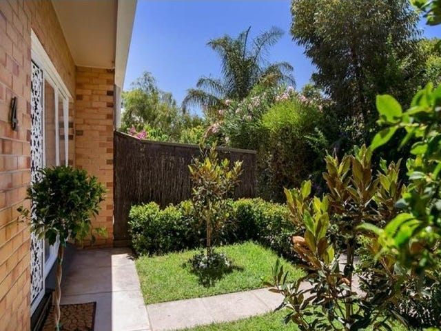 4/142 Childers Street, North Adelaide, SA 5006