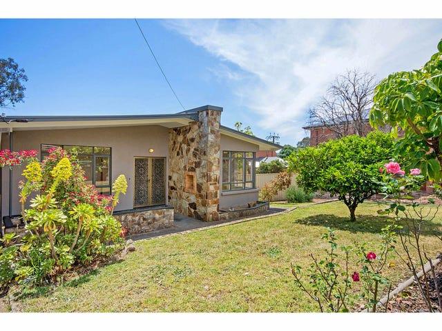 3 Roy Road, Paradise, SA 5075