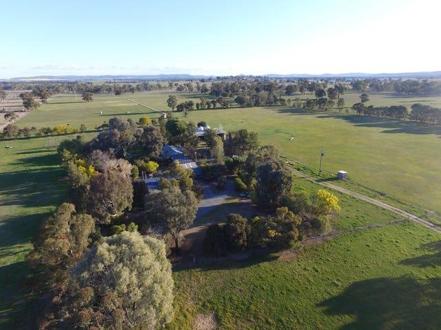 Gumly Park, 3779 Sturt Highway, Wagga Wagga, NSW 2650