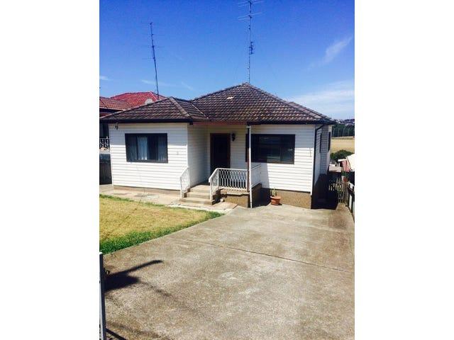 21 Dorman Street, Cringila, NSW 2502