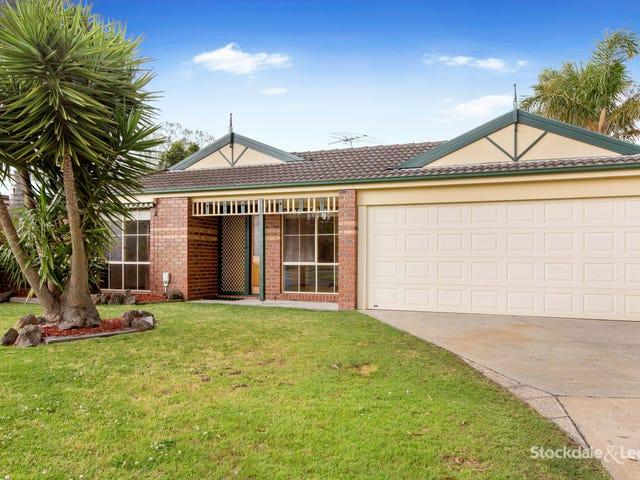 3 Landhill Close, Langwarrin, Vic 3910