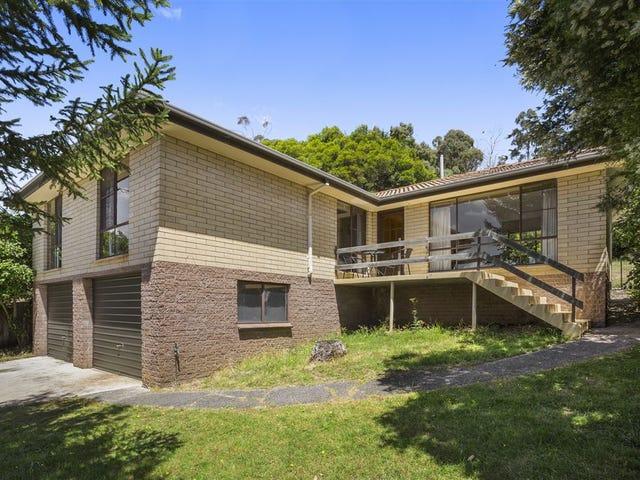 103 New World Avenue, Trevallyn, Tas 7250