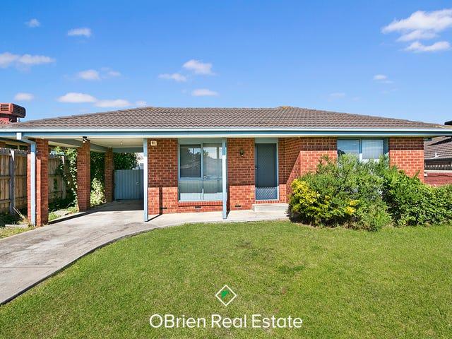 71 Homestead Road, Berwick, Vic 3806