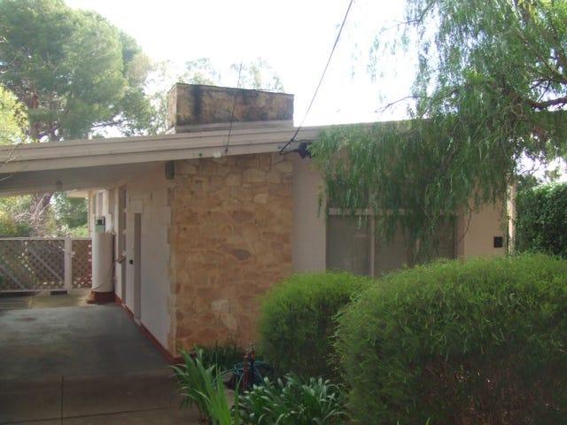 29 Edgcumbe Terrace, Rosslyn Park, SA 5072