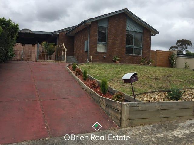6 Granby Court, Endeavour Hills, Vic 3802