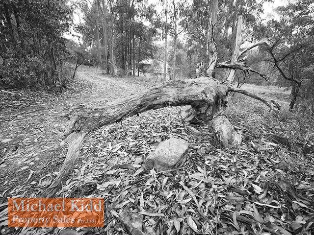 16 Private Road No 1, Bucketty, NSW 2250