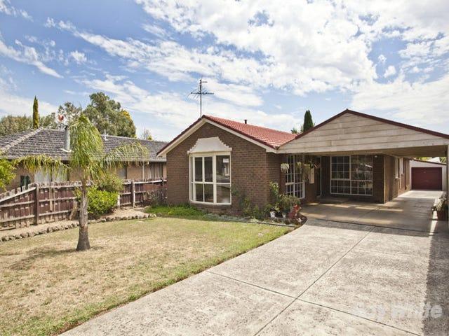 13 Paulette Court, Scoresby, Vic 3179