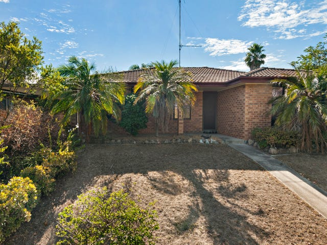 16 Clayton Crescent, Rutherford, NSW 2320