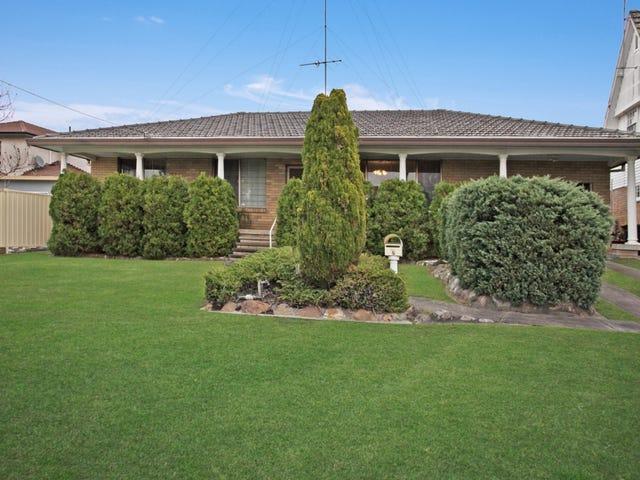 8 Goldingham Street, Tenambit, NSW 2323