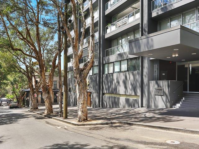408/1 Francis Street, Darlinghurst, NSW 2010