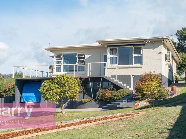 19 Taree Crescent, Gravelly Beach, Tas 7276